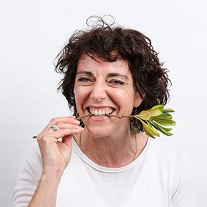 Serrault paysagiste sur la Ville aux Dames vous propose ses services aussi à Truyes.