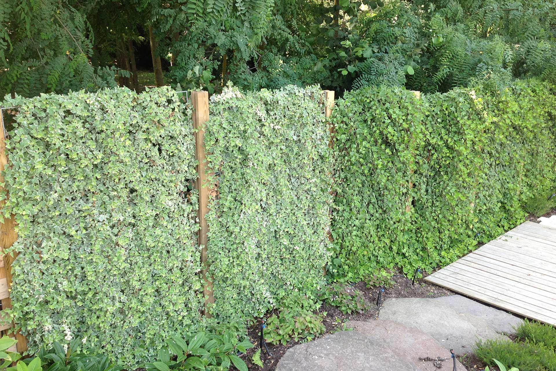 Serrault Jardins vous propose une gamme de panneaux, palissades en bois.