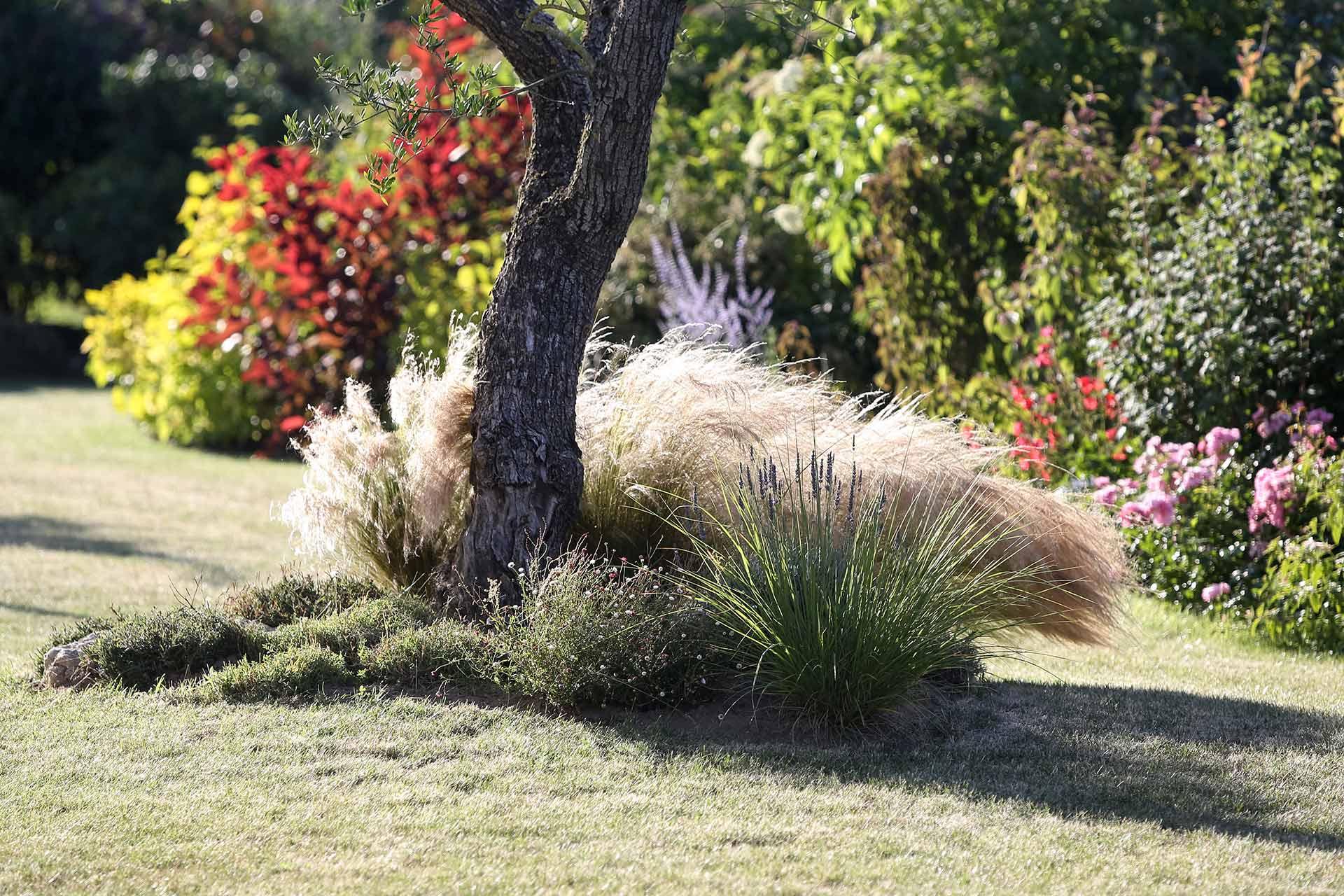 Valoriser vos massifs et votre terrasse grace aux conseils de votre paysagiste.
