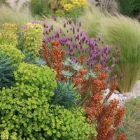 Profitez de l'expérience de notre équipe de paysagiste pour votre projet de jardin.